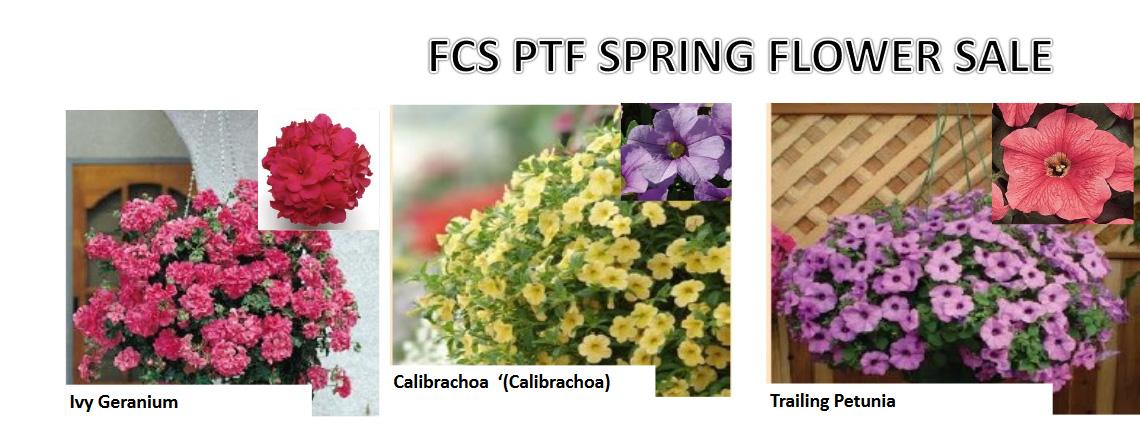 PTF Flower Sale